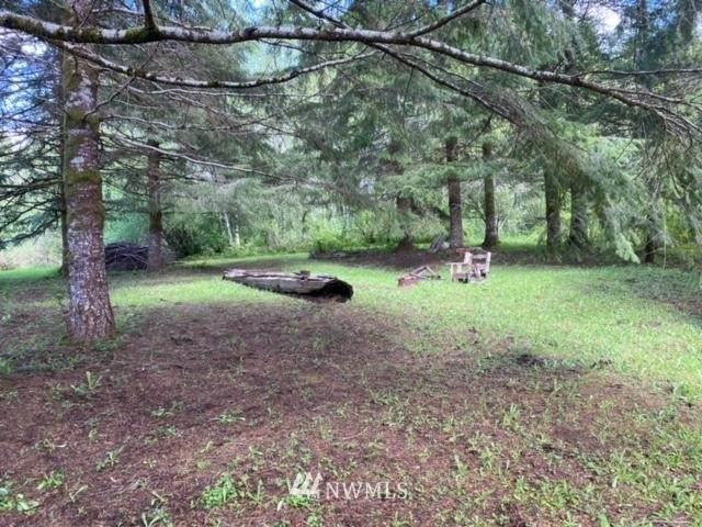 27 Black Creek Lane, Montesano, WA 98563 (#1771017) :: Alchemy Real Estate