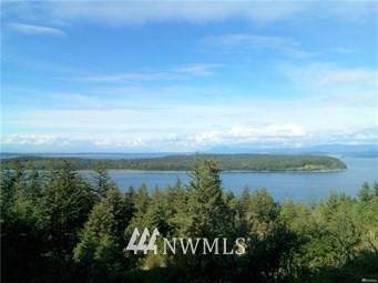 3056 Mt Vista Drive, Lummi Island, WA 98262 (#1773248) :: Northwest Home Team Realty, LLC