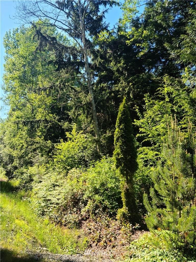 4140 Red Cedar Road - Photo 1