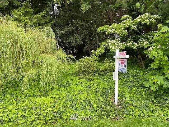 246 211th Place NE, Sammamish, WA 98074 (#1777645) :: Better Properties Real Estate