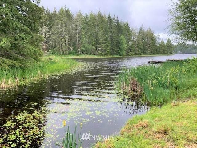 1831 E Timberlake Drive W, Shelton, WA 98584 (#1783003) :: McAuley Homes