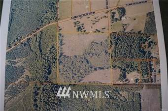 0 Larson Road, McCleary, WA 98557 (#1784739) :: The Kendra Todd Group at Keller Williams