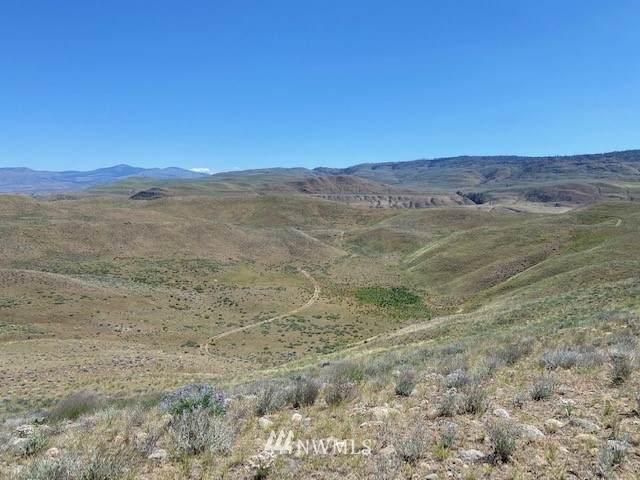 0 Highway 20, Okanogan, WA 98840 (MLS #1789208) :: Nick McLean Real Estate Group