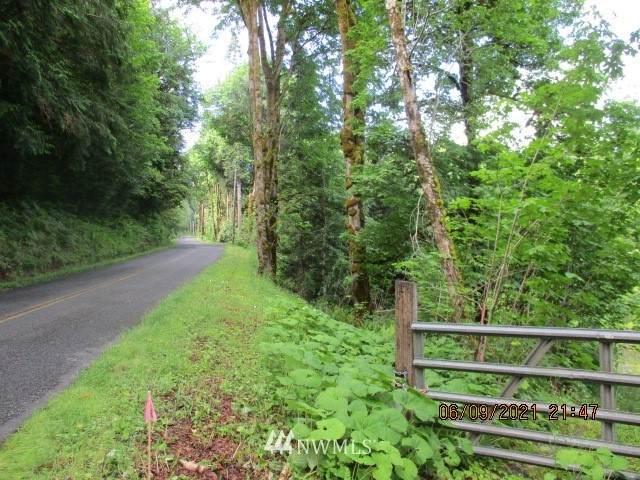 55555 W Deegan Road, Shelton, WA 98584 (#1789325) :: Keller Williams Western Realty