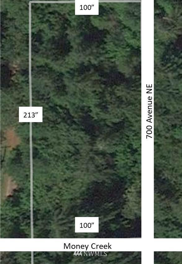 69908 NE Money Creek Road, Skykomish, WA 98288 (#1790445) :: Keller Williams Western Realty