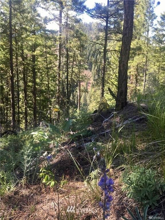 0 Red Top Road, Cle Elum, WA 98922 (#1790524) :: Keller Williams Western Realty