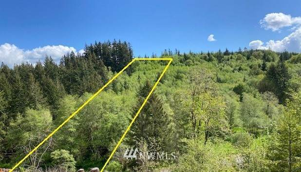 0 Lost Valley Road, Curtis, WA 98538 (#1793135) :: Icon Real Estate Group