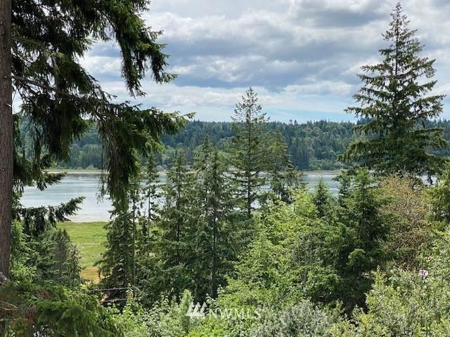 180 NE Larson Lake Road, Belfair, WA 98528 (#1793768) :: Keller Williams Western Realty