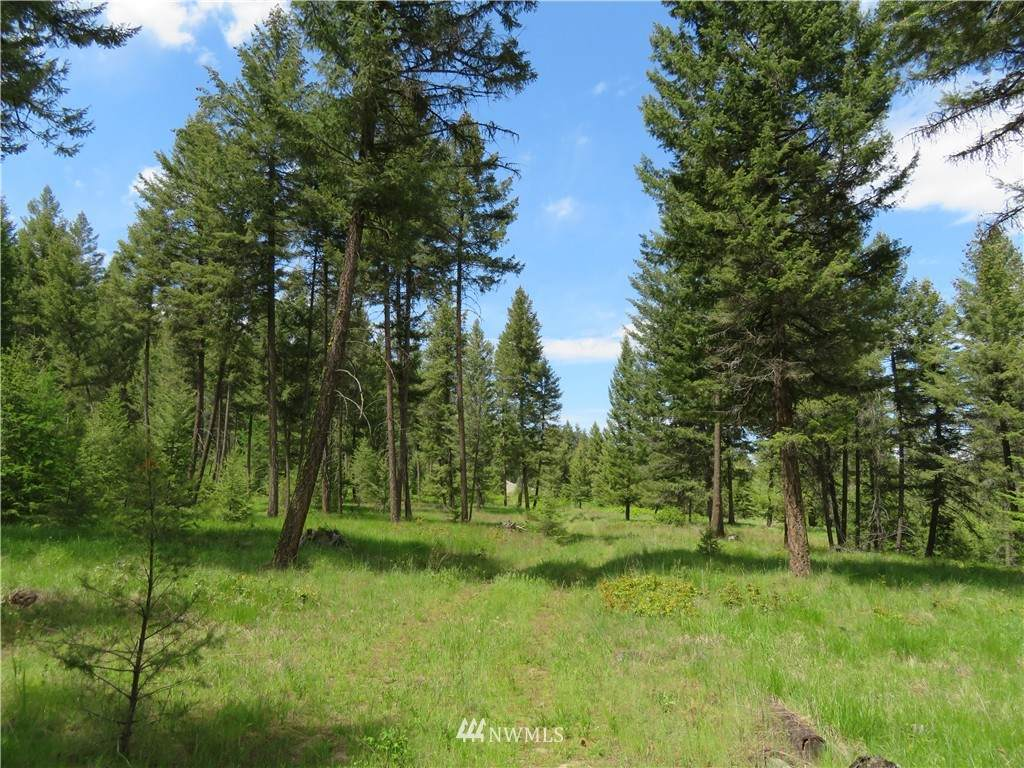 0 TBD Kettle River Road - Photo 1