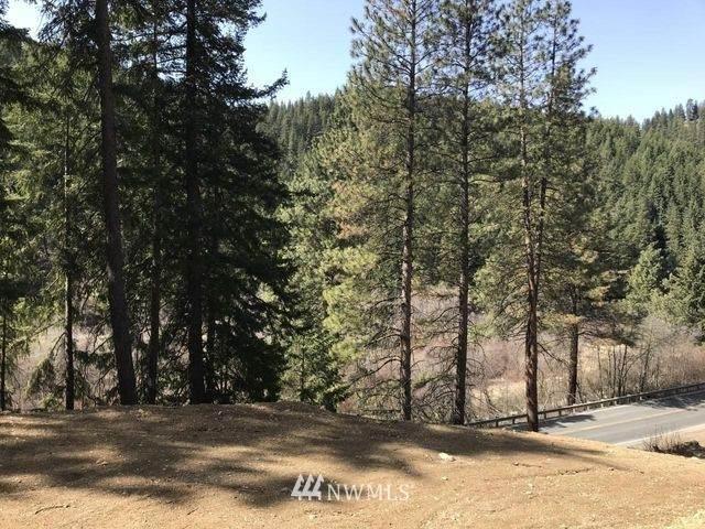 16773 Chumstick Highway, Leavenworth, WA 98826 (#1794933) :: Mike & Sandi Nelson Real Estate
