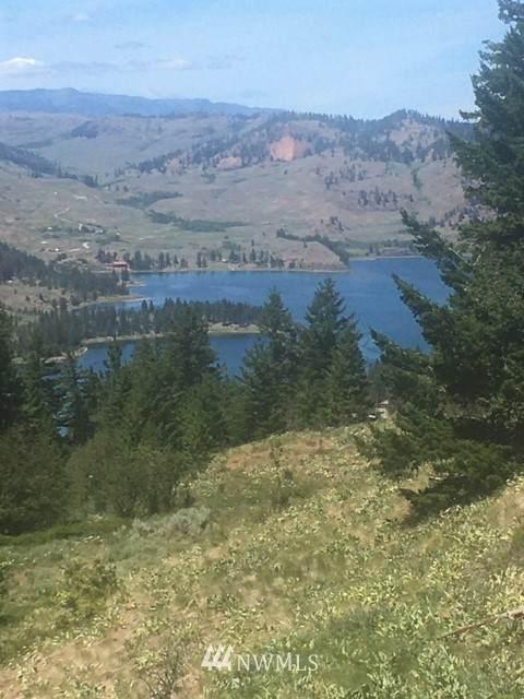 0 Tbd Whiskey Mountain Ranches, Tonasket, WA 98855 (#1795466) :: Simmi Real Estate