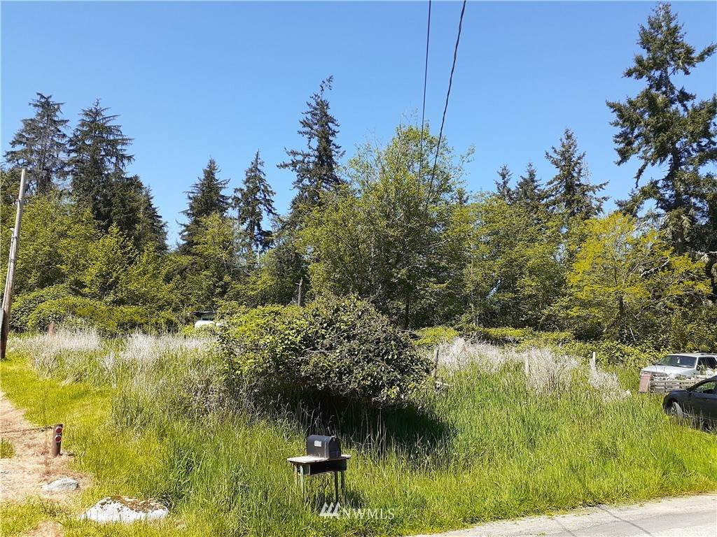 4604 Cedar Hill Road - Photo 1