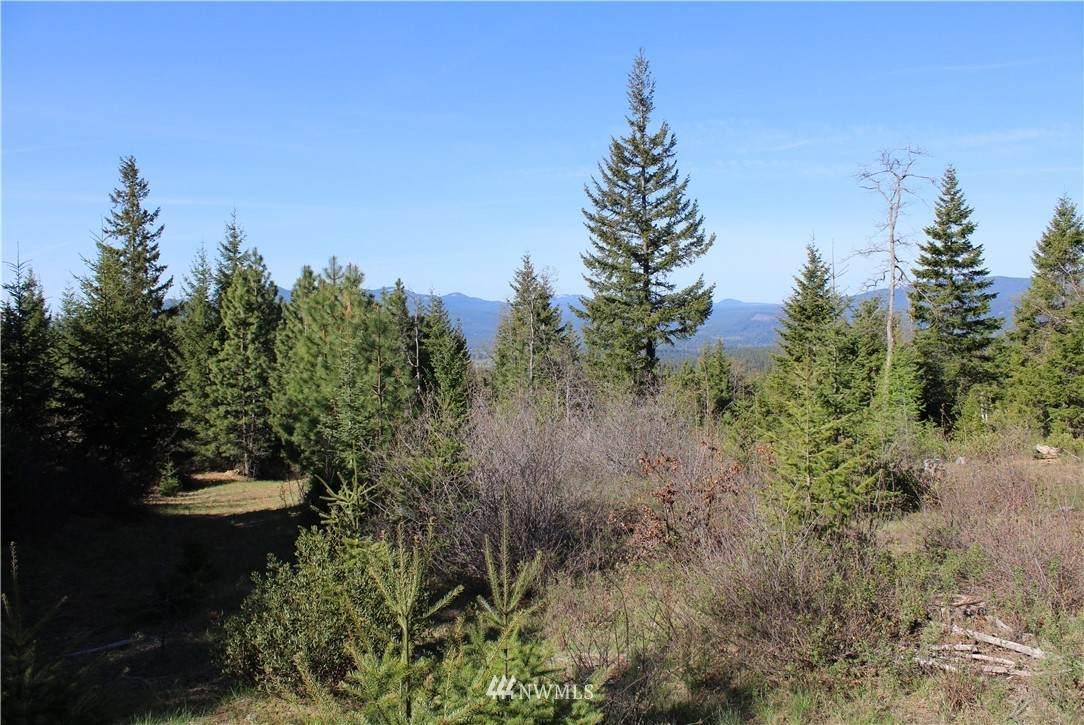 0 XXXX Mt Adams Recreation Area Road - Photo 1