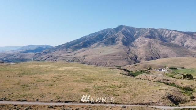 0 Buckhorn Mountain Road, Pateros, WA 98846 (MLS #1804905) :: Nick McLean Real Estate Group
