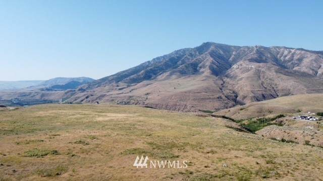 0 Buckhorn Mountain Road, Pateros, WA 98846 (MLS #1804909) :: Nick McLean Real Estate Group