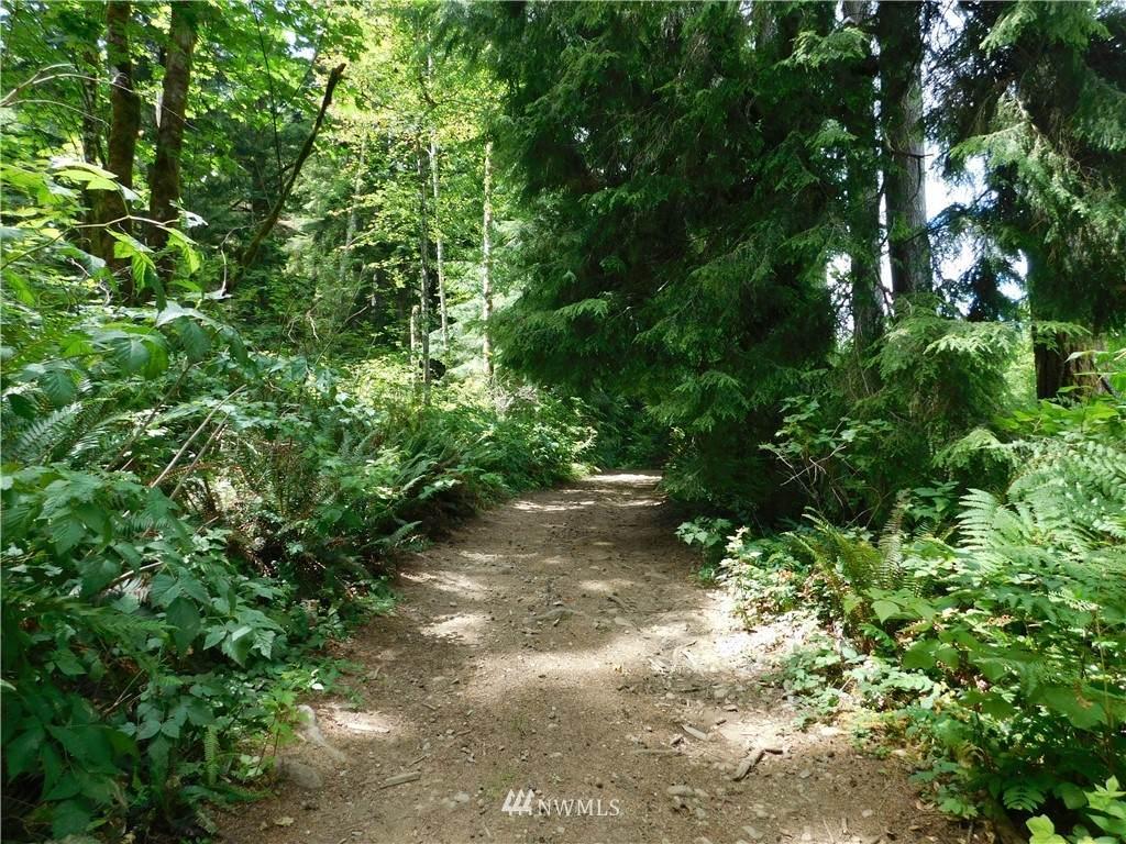 0 Woods Lake Road - Photo 1