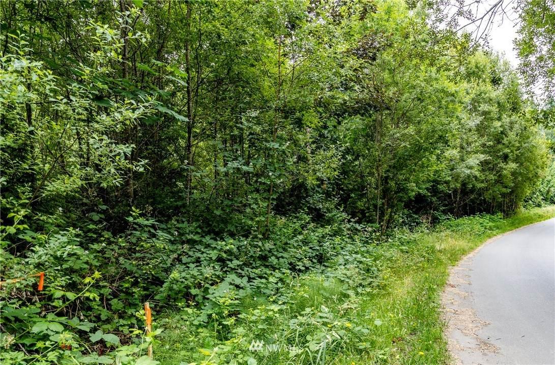 0 Tani Creek Lot L1 Road - Photo 1