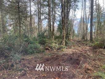470 E Hardings Hill Road, Allyn, WA 98524 (#1813096) :: M4 Real Estate Group