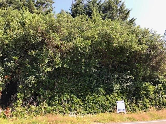 194 Polaris Boulevard SW, Ocean Shores, WA 98569 (MLS #1813381) :: Community Real Estate Group