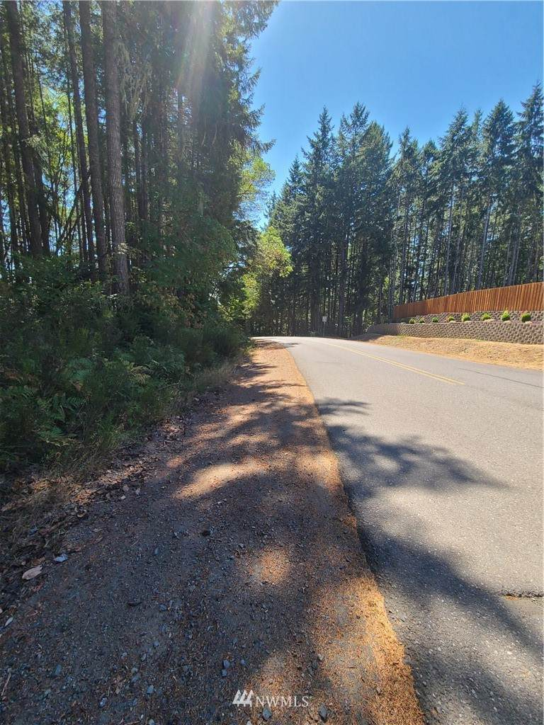 0 Larson Lake Road - Photo 1
