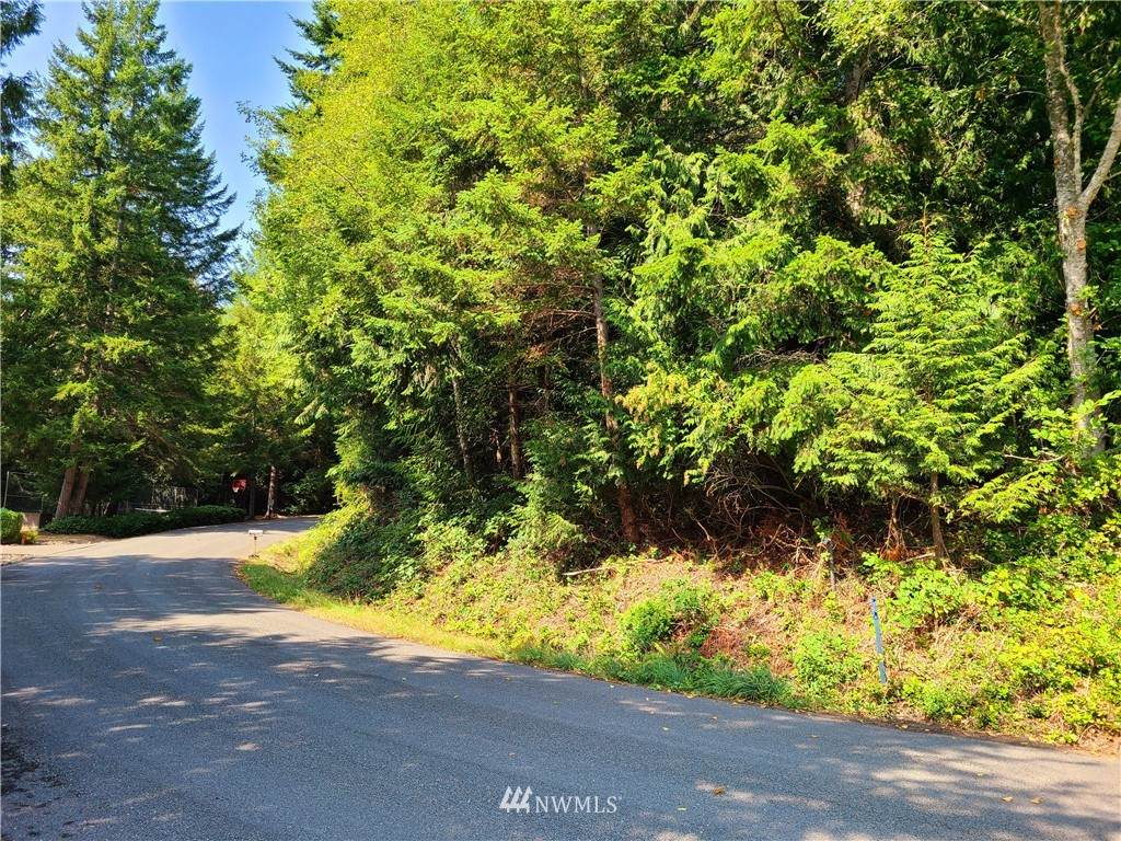 0 Rainier Lane - Photo 1