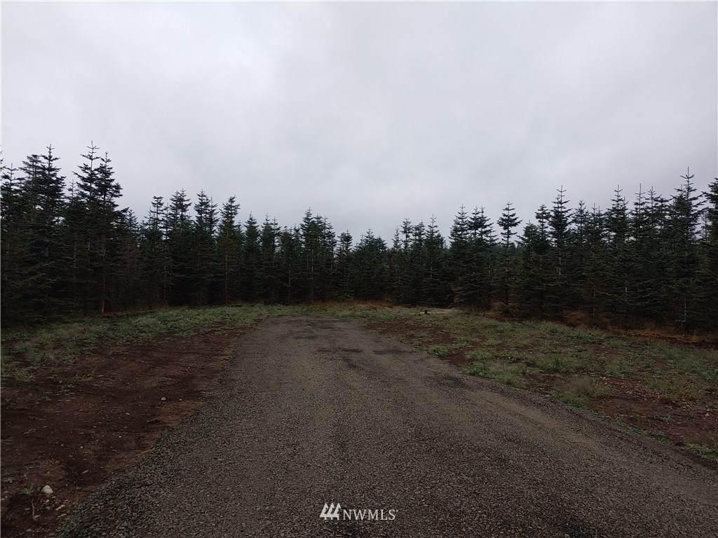 23 Middle Satsop Road - Photo 1