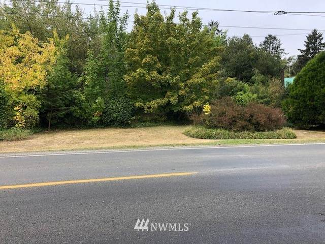 27235 APP. Sandridge Road, Ocean Park, WA 98640 (#1840888) :: Neighborhood Real Estate Group