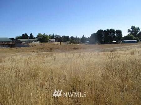 319 S Warren Street, Waterville, WA 98858 (#1842531) :: McAuley Homes