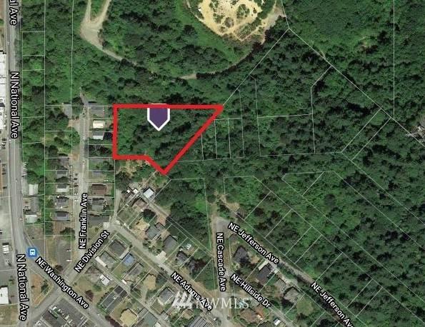 0 NE Franklin Avenue, Chehalis, WA 98532 (#1849162) :: Keller Williams Western Realty