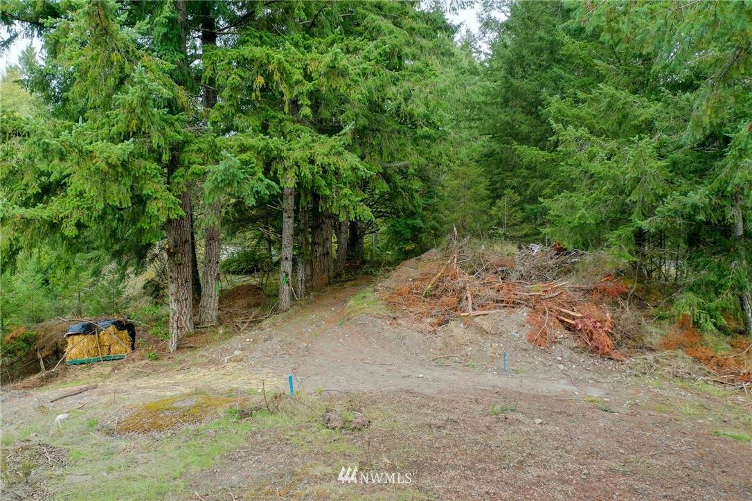 12504 Crescent Valley Drive - Photo 1