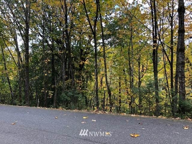 31 Harbor View Drive, Bellingham, WA 98229 (#1856564) :: Keller Williams Western Realty