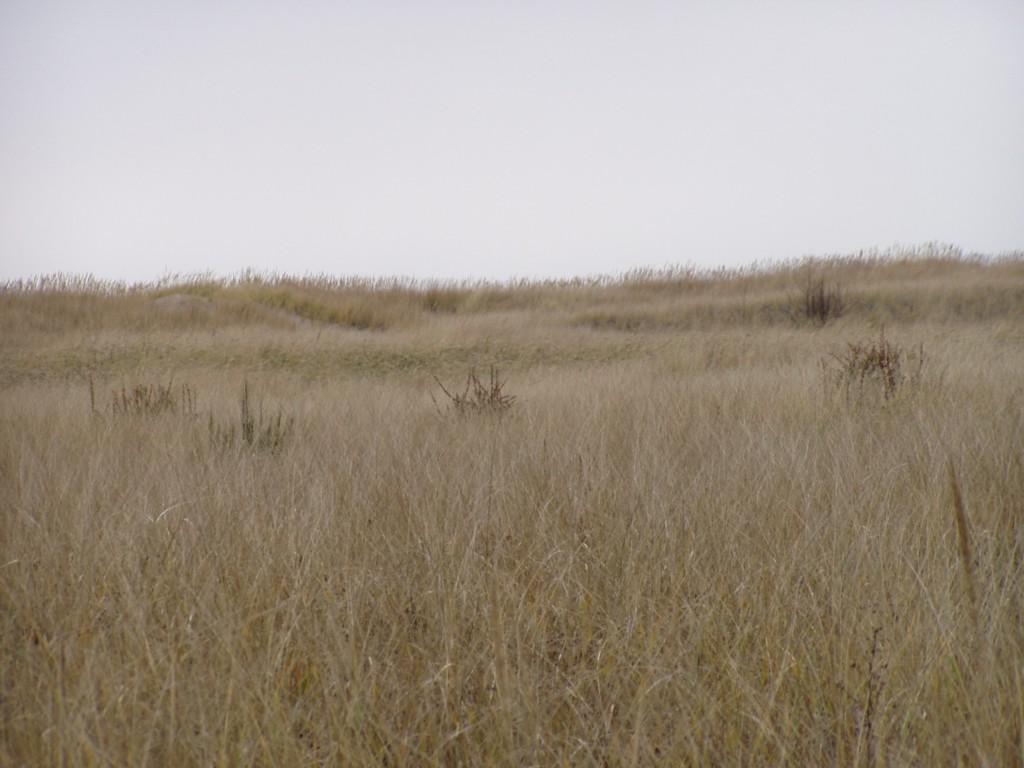 0 J Place  Beachwoods - Photo 1