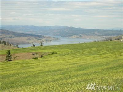 35455 Arm View Lane N, Creston, WA 99117 (#885939) :: The Shiflett Group