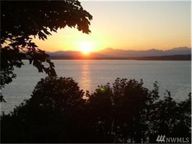 54-XX Beach Dr SW, Seattle, WA 98136 (#890404) :: Ben Kinney Real Estate Team