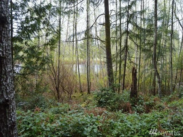 13731 NW Coho Run, Bremerton, WA 98312 (#957043) :: Homes on the Sound
