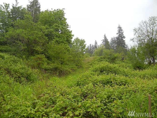 176 Deer Trail Rd, Kelso, WA 98626 (#1124716) :: Ben Kinney Real Estate Team