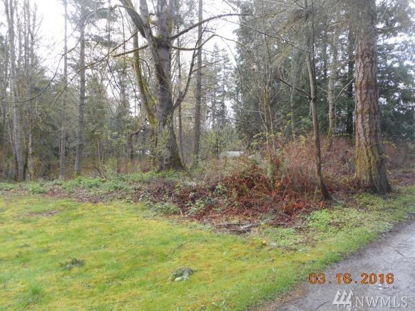 4111 Dry Lake Rd, Camano Island, WA 98282 (#1137669) :: Ben Kinney Real Estate Team