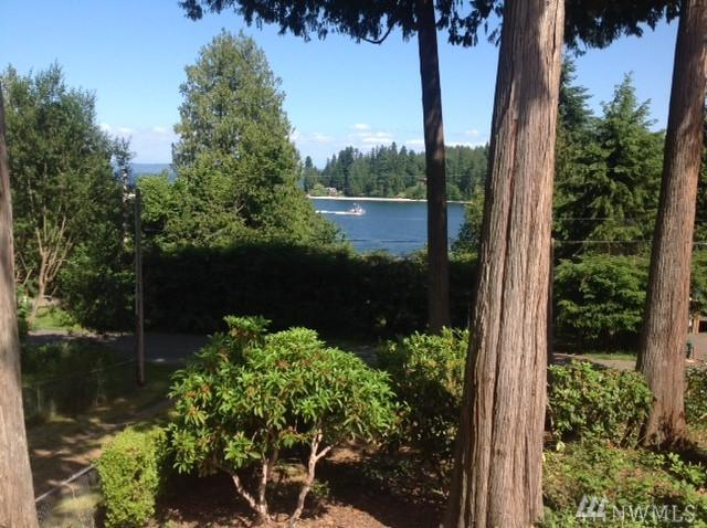 17411 South Angeline Ave NE, Suquamish, WA 98392 (#1148269) :: Ben Kinney Real Estate Team