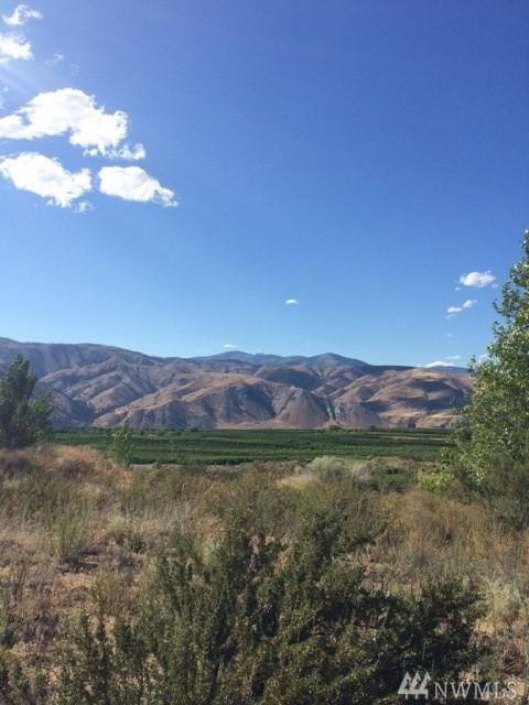 300 Desert Canyon Blvd, Orondo, WA 98843 (#1175247) :: Ben Kinney Real Estate Team
