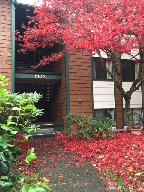 7322 N Skyview Pl E202 E202, Tacoma, WA 98406 (#1201239) :: Commencement Bay Brokers
