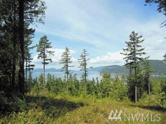 0-T-10 N Thatcher Pass Rd NW, Decatur Island, WA 98221 (#1221146) :: Canterwood Real Estate Team