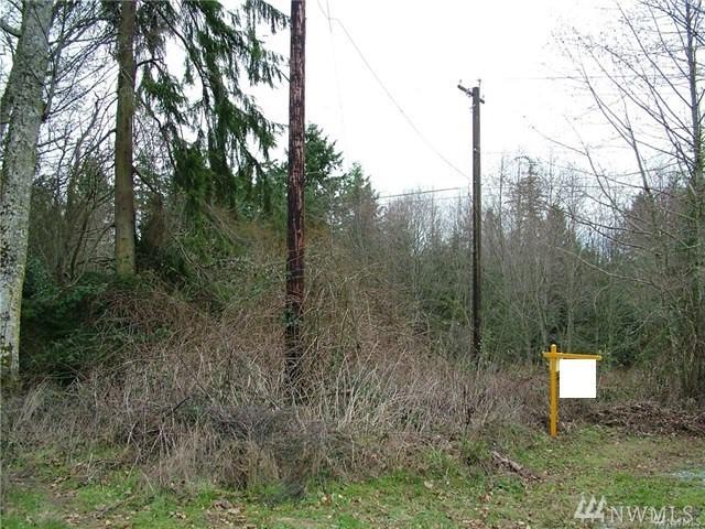 11111 Prospect Ave., Port Townsend, WA 98368 (#1234227) :: Canterwood Real Estate Team