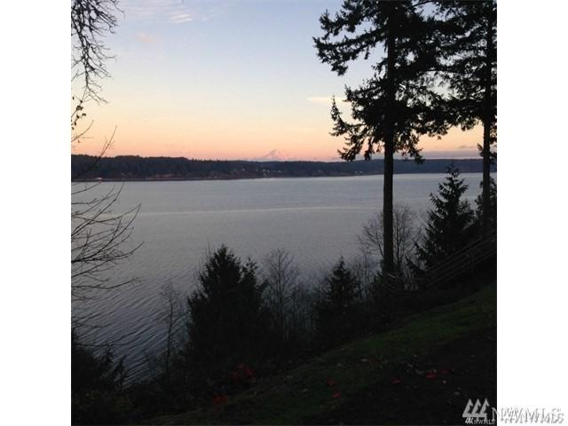 231 Vineyard Crest Rd Lot B, Grapeview, WA 98546 (#1250400) :: Better Homes and Gardens Real Estate McKenzie Group