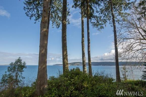 681 Bachelor Rd, Sequim, WA 98382 (#1271282) :: Better Homes and Gardens Real Estate McKenzie Group