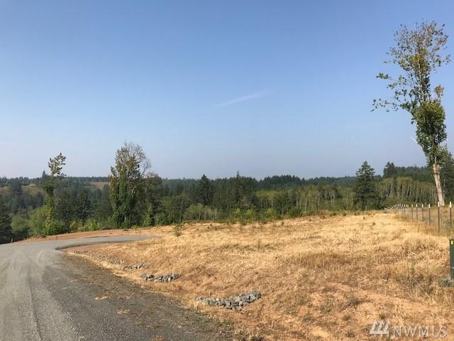 0-Lot B/D Yeti Lane, Chehalis, WA 98532 (#1274045) :: Crutcher Dennis - My Puget Sound Homes