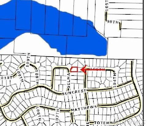 10023 Selma Cir, Anderson Island, WA 98303 (#1287543) :: Morris Real Estate Group
