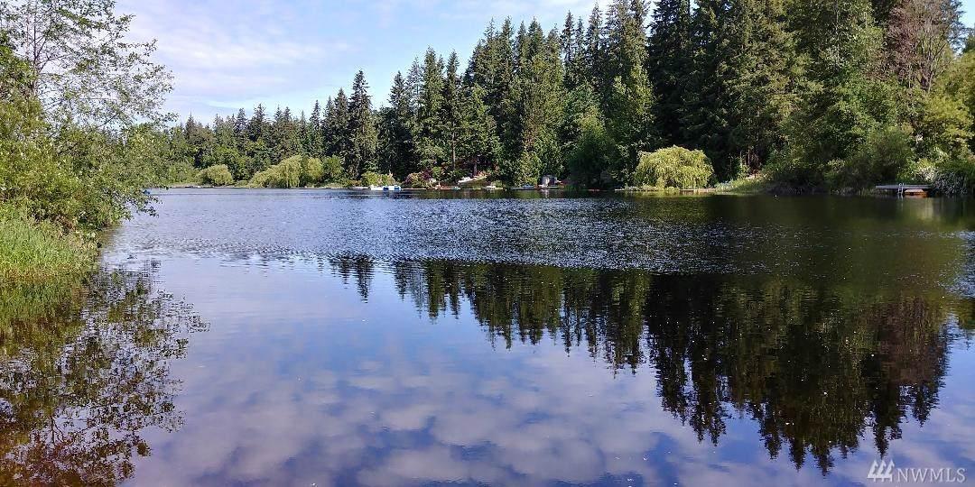 33007 Lake Holm Dr - Photo 1
