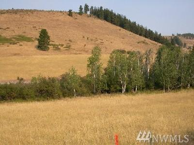 0-Lot 13 Low Rd, Cle Elum, WA 98922 (#1321829) :: Homes on the Sound