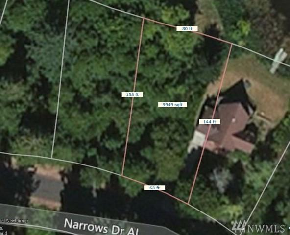 10407 Narrows Drive, Anderson Island, WA 98303 (#1397021) :: Pickett Street Properties