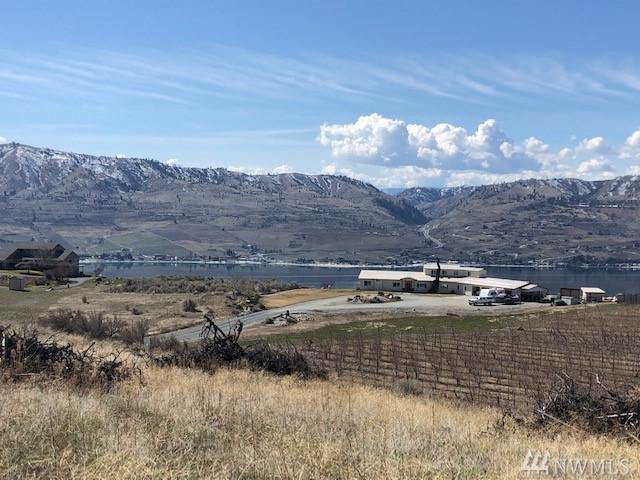 0 Boyd Road Rd, Chelan, WA 98816 (#1404829) :: Real Estate Solutions Group